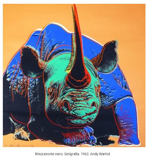 230-Rinoceronte-2